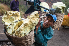Miner weighs his basket of sulfer at Ijen crater Stock Photo