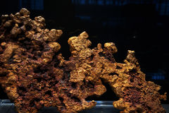 Minerai d'or Photos stock