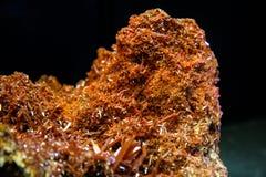 Minerai de Crocoite de Tasmanie Image libre de droits