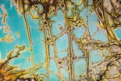 Minerai de Variscite d'Utah, Etats-Unis Photographie stock