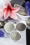 Minerais antiques - traitement de luxe de station thermale de visage et de corps, powd d'argile Image stock