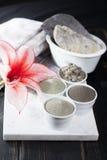 Minerais antiques - traitement de luxe de station thermale de visage et de corps, powd d'argile Photos libres de droits