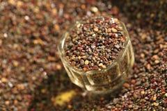 Minerais rouges de pyrope (grenat) Photos stock