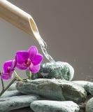 Minerais verdes com água de energização Fotografia de Stock Royalty Free