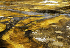 Mineral Bacteria. Geothermal spring bacteria abstract formation stock photo