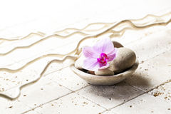 Mineral cup with stones and flower for zen attitude. Spa and wellbeing concept - still life with pink flowers and beige pebbles in water cup for washing-up and Stock Images
