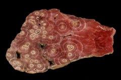 Mineral de piedra macro de la calcita del cobalto en un fondo negro fotos de archivo