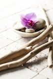 Mineral decor with pebbles and orchid for spa treatment Stock Photography