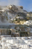 Mineral deposits hot pools mammoth springs Royalty Free Stock Photos