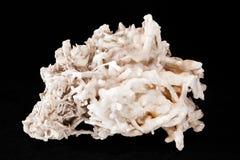 mineral do aragonit da flor do ferro Foto de Stock