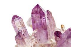 Mineral för ametistCrystal Druse makro på vit bakgrund fotografering för bildbyråer