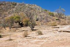 Mineral fjädrar - den berömda turist- destinationen, Oaxaca, Mexico Arkivfoton