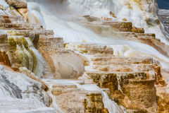 Mineral flow in yellowstone Royalty Free Stock Photos