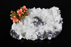 Mineral and flower. On a black background Royalty Free Stock Photo