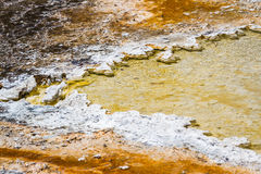 Mineral formations in yellowstone. Closeup of mineral rich formations in the thermal active waters of Yellowstone national park royalty free stock photo