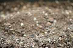 Mineral and humus substrate for plants Royalty Free Stock Image