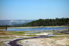 Mineral-laden water at yellowstone park Royalty Free Stock Images