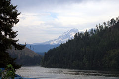 Mineral Lake, WA. View of Mount Rainer from Mineral Lake, Washington Royalty Free Stock Image