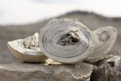 Mineral natural Imágenes de archivo libres de regalías