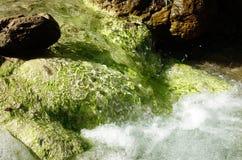 Mineral Rich Himalaya Spring Stock Image