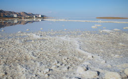 Mineral salt Dead Sea Stock Photography