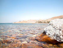 Mineral salts on coast of the Dead Sea Royalty Free Stock Image