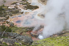 Mineral spring geyser Yellowstone Royalty Free Stock Photos