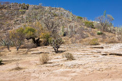 Mineral springs - famous tourist destination, Oaxaca, Mexico Stock Photos