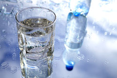 Mineral Water. Glass of mineral water with blebs on background with sky and bottle reverberation Royalty Free Stock Photo