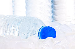 Mineral water bottle on ice close up Stock Photography