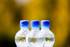 Mineral water bottles on nature background Royalty Free Stock Photography