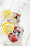 Mineral water with fruit frozen in ice cubes. Copy space Royalty Free Stock Images