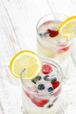 Mineral water with fruit frozen in ice cubes. Copy space Stock Image