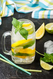 Mineral water with lemon, lime and mint. Detox. Diet. Refreshing drink Royalty Free Stock Photos