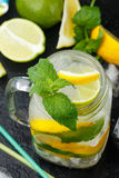 Mineral water with lemon, lime and mint. Detox. Diet. Refreshing drink Stock Photography