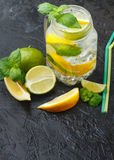 Mineral water with lemon, lime and mint. Detox. Diet. Refreshing drink Royalty Free Stock Image
