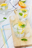 Mineral water with limes, oranges, lemons, ice and mint with straws Stock Photography