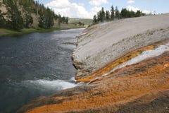 Minerale e stuoia dei batteri nel parco nazionale di Yellowstone fotografia stock libera da diritti