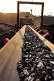 Minerale metallifero del carbone su un nastro trasportatore per elaborare fotografia stock