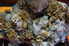 Minerale metallifero dell'oro Immagine Stock