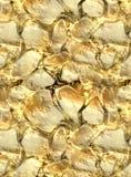 Minerale metallifero dell'oro nella struttura di pietra Fotografia Stock