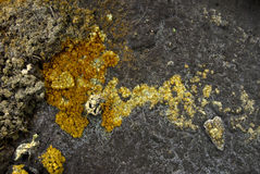 Minerale texturen Royalty-vrije Stock Foto's