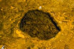 Minerale vormingen in yellowstone Royalty-vrije Stock Foto's