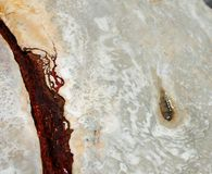 Minerale warmwaterbron Stock Afbeeldingen