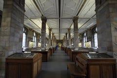 Mineralengalerij, de Biologiemuseum van Londen Royalty-vrije Stock Foto
