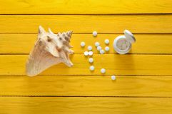 Mineraler för hälsa och skönhet Minnestavlor av kalcier, skal på den gula trätabellen Top beskådar MEDICINSKT begrepp Arkivbilder