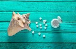 Mineraler för hälsa och skönhet Minnestavlor av kalcier, skal på turkosen trätabell Top beskådar Arkivfoton