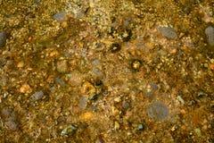 Mineraler i trasparent vatten, stenar, vatten, abstrakt bakgrund Royaltyfria Foton