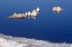 Minerales naturales de la sal del mar muerto fotografía de archivo libre de regalías