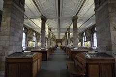 Mineralgalleri, London naturhistoriamuseum royaltyfri foto